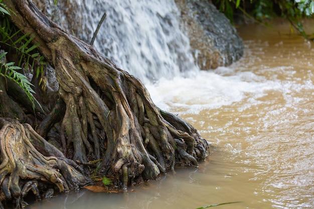 Wasserfall in der thailändischen natur