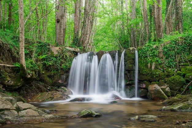 Wasserfall in einem katalanischen wald