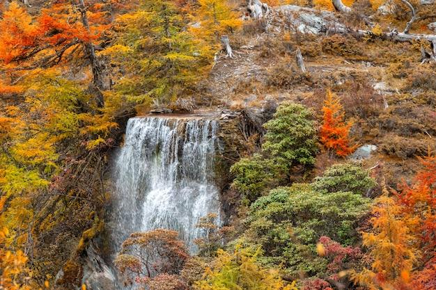 Wasserfall mit autunm verlässt im yading-naturreservat, sichuan, china