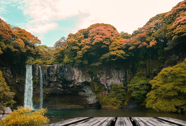 Wasserfall mit bäumen herum