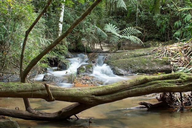 Wasserfall und fluss fließen durch einen regenwald in brasilien.