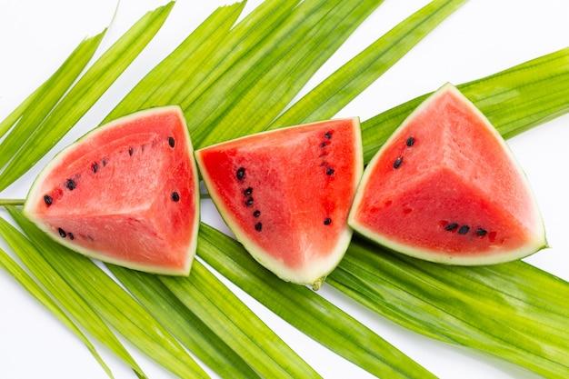 Wassermelone auf tropischen palmblättern auf weißem hintergrund.