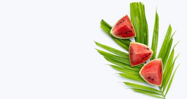 Wassermelone mit tropischen palmenblättern auf weißem hintergrund.