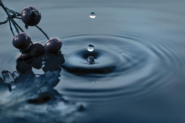 Wasserspritzen mit hagebuttenbeerenschattenbild