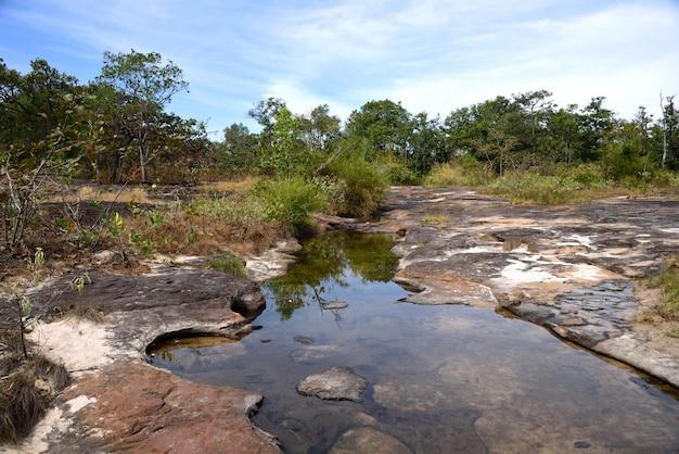 Wasserstrom auf berg im gras blüht natur in provinz ubon ratchathani, thailand