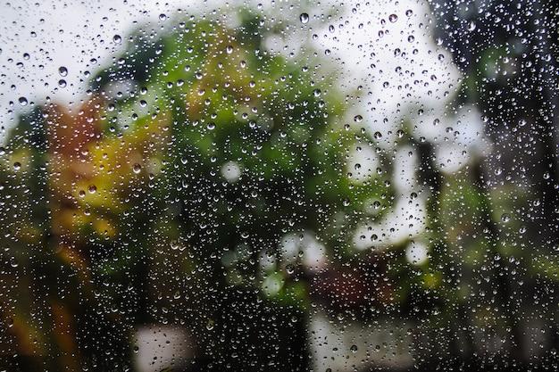 Wassertropfen auf glas oder regentropfen mit baum im hintergrund