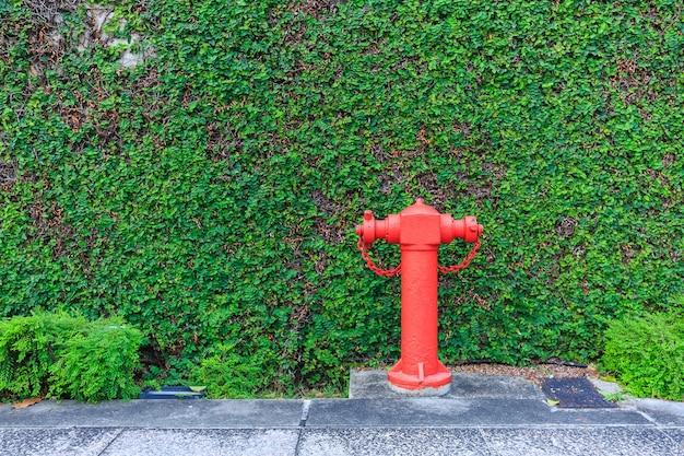 Wasserversorgung des roten feuers und mit grüner baumwand