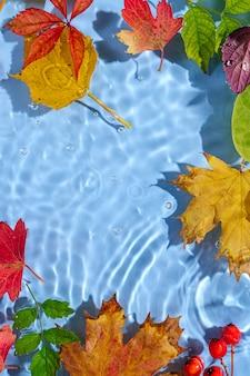 Wasserwelligkeit mit autnm blättern. trendiger hintergrund mit kopienraum.