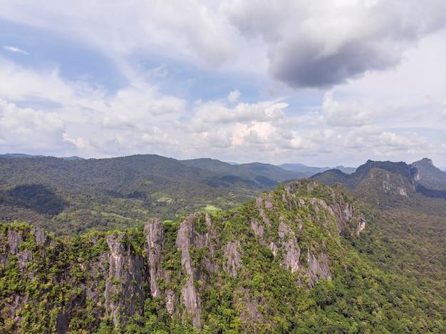 Weg durch den grünen wald und die landschaft von thailand, luftbild der draufsicht vom brummen