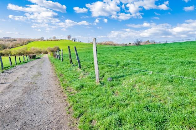Weg durch ein weites grünes tal an einem sonnigen tag