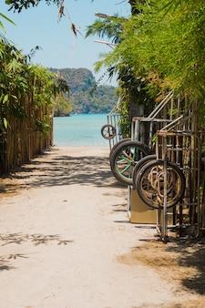 Weg geht zum schönen idyllischen strand