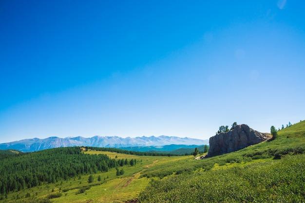 Weg zu riesigen bergen über grünes tal und wald. wiese mit üppiger vegetation im hochland und ungewöhnlichem stein mit zedern. nadelbäume im sonnenlicht. erstaunliche berglandschaft.