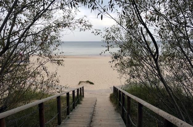 Weg zum leeren sandstrand über holztreppen, die durch die bäume führen
