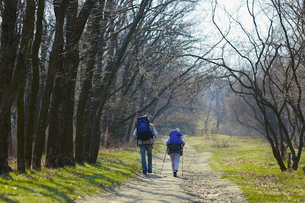 Weg zweier liebender herzen. alter familienpaar von mann und frau im touristenoutfit, das an grünem rasen nahe an bäumen an sonnigem tag geht. konzept von tourismus, gesundem lebensstil, entspannung und zusammengehörigkeit.