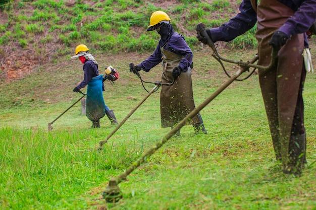 Weibliche arbeitskleidung schutzkleidung mäht das rasengras mit einem rasenmäher