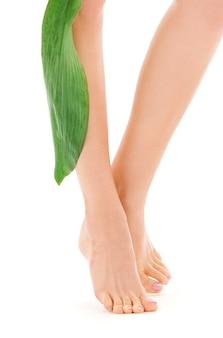 Weibliche beine mit grünem blatt über weiß
