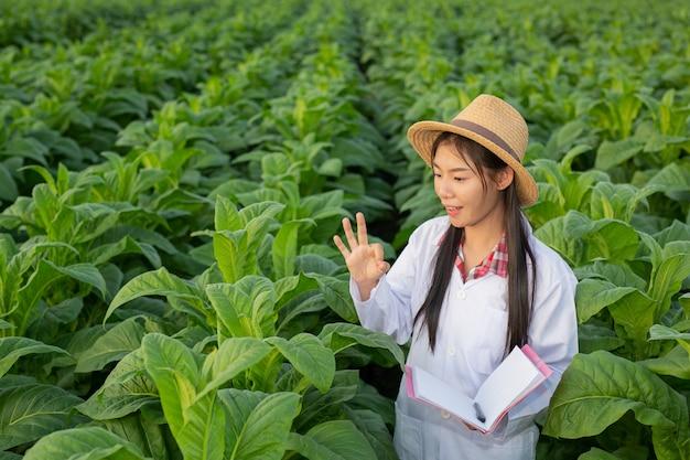 Weibliche forscher untersuchten tabakblätter