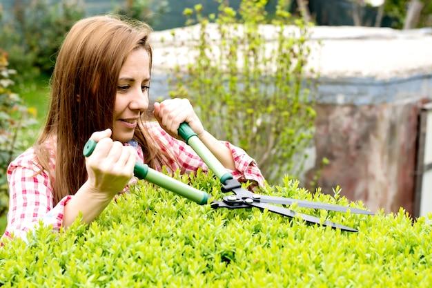 Weibliche gärtner beschneiden eine hecke im hinterhof am sonnigen frühlingstag