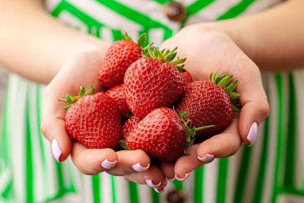 Weibliche hände, die frische erdbeeren nah halten. sommerkonzept.