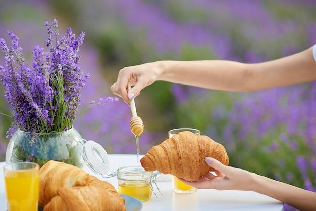 Weibliche hände, die honig auf croissants im lavendelfeld setzen