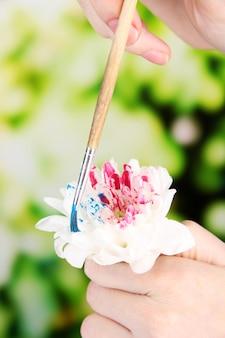 Weibliche hände, die weiße blume halten und sie mit farben auf hell malen