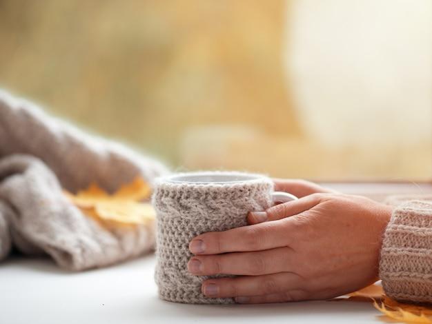 Weibliche hände in einer strickjacke, die einen tasse kaffee auf dem herbstfenster im haus hält