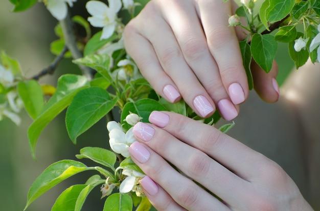 Weibliche hände mit apfelbaumblumen, maniküre
