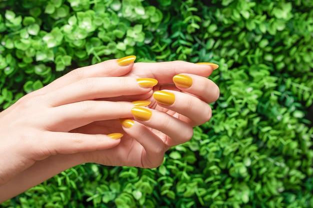 Weibliche hände mit gelbem nageldesign. glitzergelbe nagellack-maniküre. frauenhände auf grünem blattnaturhintergrund