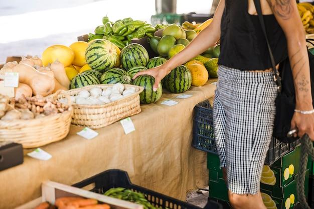 Weibliche haltene wassermelone beim kauf von früchten im markt