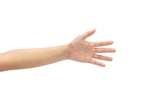 Weibliche hand auf dem getrennt auf weißem hintergrund