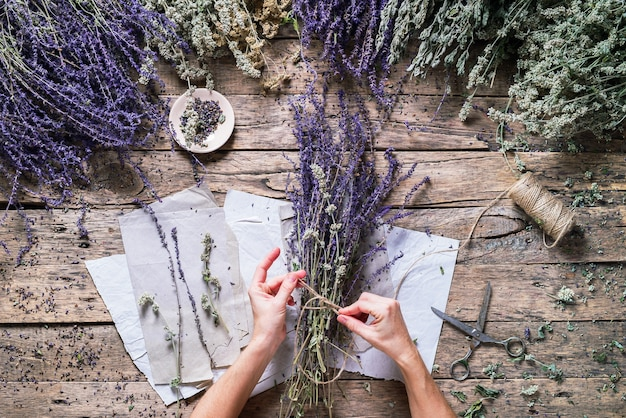 Weibliche hand binden bunch violet sage alternative