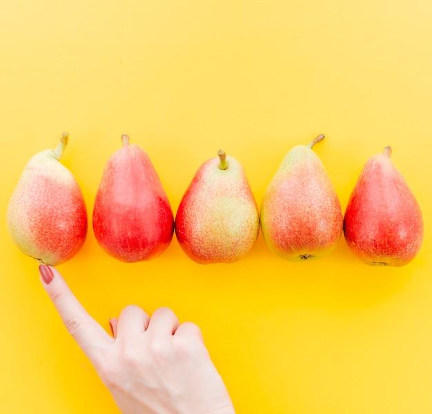 Weibliche hand der ernte, die früchte zählt