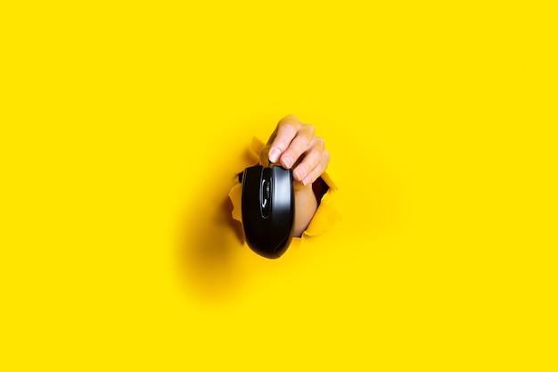 Weibliche hand, die eine schwarze computermaus auf einem hellen gelben hintergrund hält