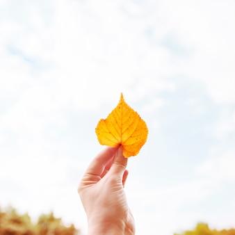Weibliche hand, die gelbes blatt auf himmelhintergrund hält. herbst-konzept.