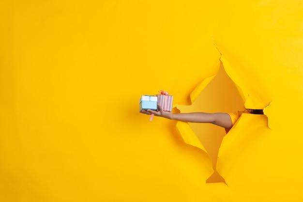 Weibliche hand, die geschenke, geschenk, überraschung im zerrissenen gelben papierlochhintergrund gibt. aufbruch, durchbruch. konzept der feier, einkaufen, vorschlag, verkauf, anzeige. exemplar. aktionsrabatte