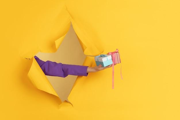 Weibliche hand, die rosa geschenk gibt, überraschung im zerrissenen gelben papierlochhintergrund. aufbruch, durchbruch. konzept der feier, einkaufen, vorschlag, verkauf, anzeige. exemplar. aktionen, rabatte.
