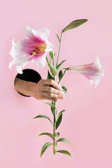 Weibliche hand, die rosa lilie im papierloch hält.