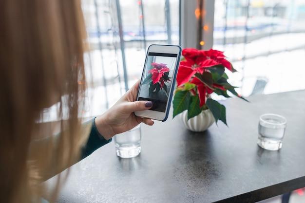 Weibliche hand, die weihnachtsblume auf smartphone fotografiert