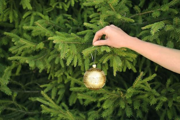 Weibliche hand, die weihnachtskugel auf tannenzweig hängt