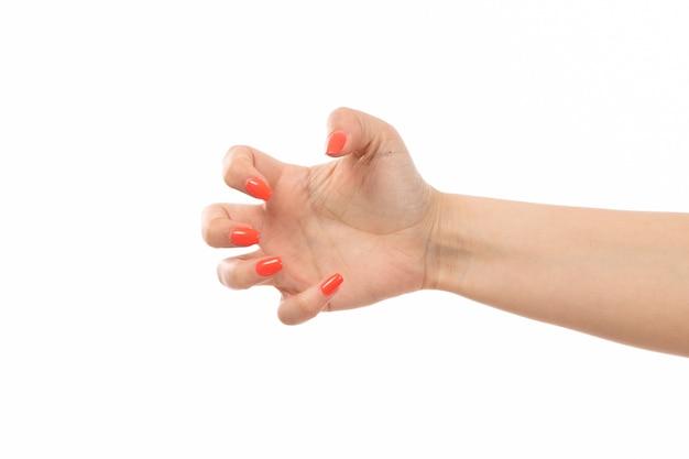 Weibliche hand einer vorderansicht mit farbigen nagelpfoten auf dem weiß