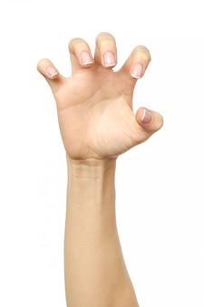 Weibliche hand greift nach etwas