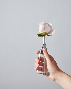 Weibliche hand halten einen löffel für eiscreme mit schöner weißer pfingstrosenknospe auf einem grauen, kopierraum. sommer food konzept.