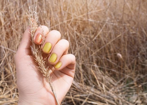 Weibliche hand mit glitzergelbem nageldesign. nagellack-maniküre in glitzer-orange. frau hand halten trockene schilfblume.