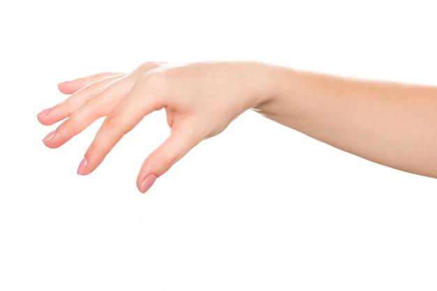 Weibliche hand nah oben lokalisiert