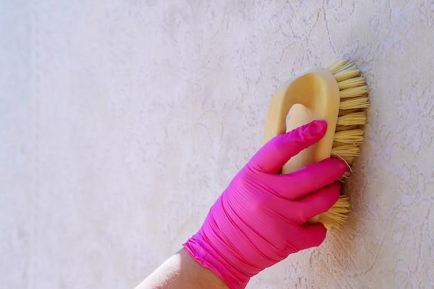 Weibliche hand reinigt den teppich mit einer bürste und einem reinigungsmittel.