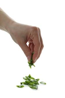 Weibliche hand streuen gehackte grüne zwiebel, lokalisiert auf weiß
