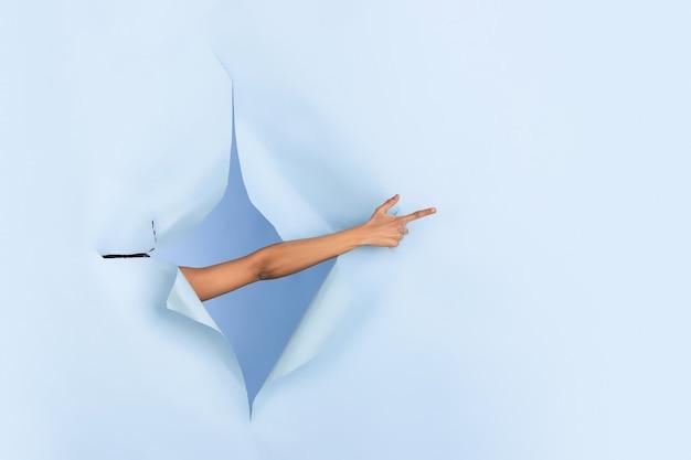 Weibliche hand zeigend, in zerrissenem blauem papierlochhintergrund zeigend. aufbruch, durchbruch mit gestikulieren. konzept der feier, einkaufen, vorschlag, verkauf, anzeige. exemplar. aktionen, rabatte.