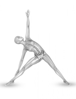 Weibliche medizinische figur 3d mit dem skelett in der yogahaltung