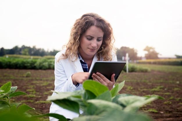 Weibliche technologin agronomin mit tablet-computer im feld überprüfung der qualität und des wachstums von pflanzen für die landwirtschaft