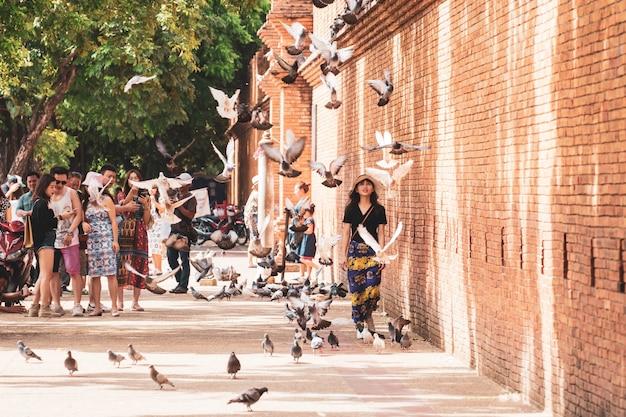 Weibliche touristen genießen das gehen und beobachten von vögeln an der alten mauer und am wassergraben der alten stadt phae gate chiang mai in chiang mai nordthailand